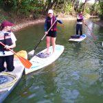 clean-up en paddle à Joinville