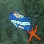 Un paquet de cigarette et une étoile de mer au fond de l'eau
